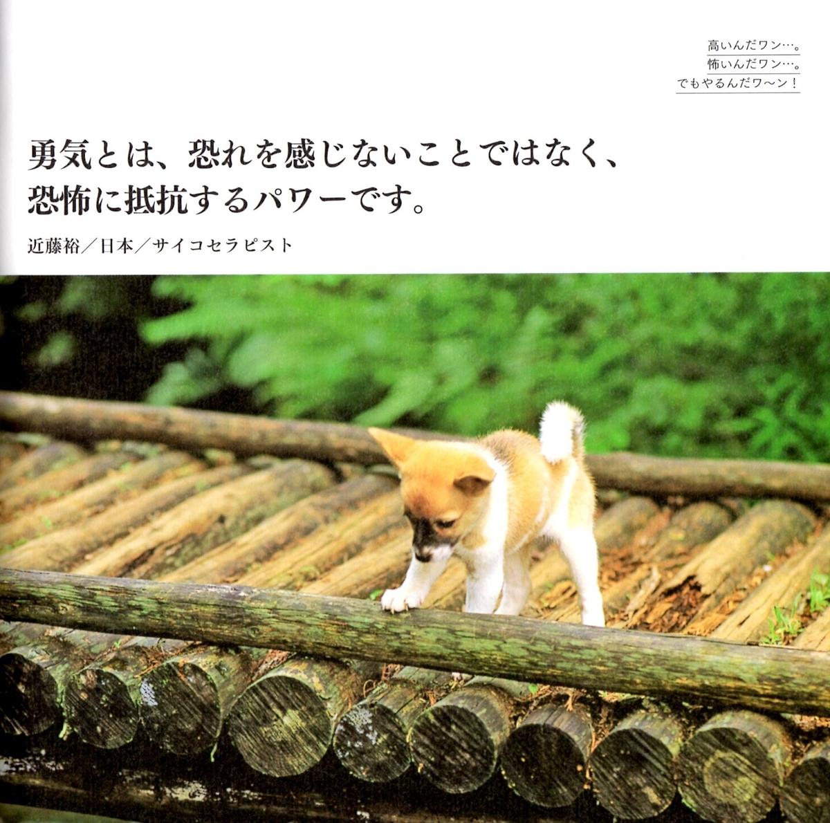 f:id:hamasansu:20190620002224j:plain