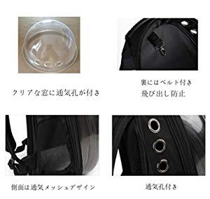 f:id:hamatimaruisaki:20180806163126j:plain
