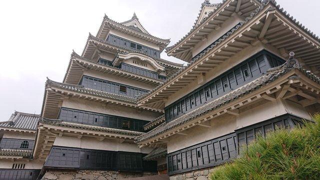 足元から松本城を見上げる