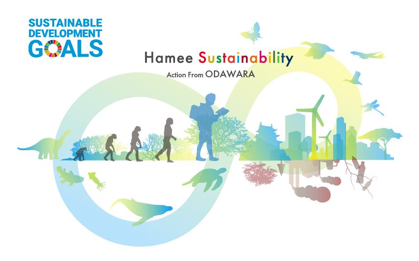 Hamee Sustainability