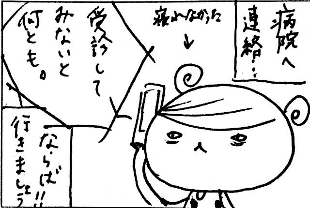 f:id:hamgasukii:20170124000919j:image