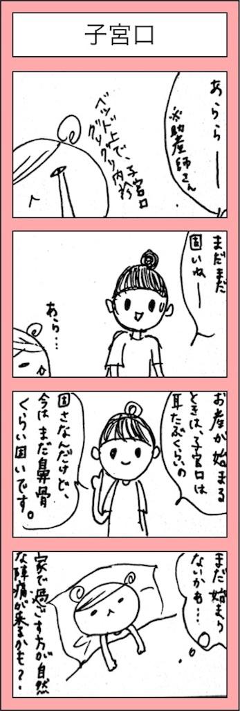 f:id:hamgasukii:20170128113635j:image