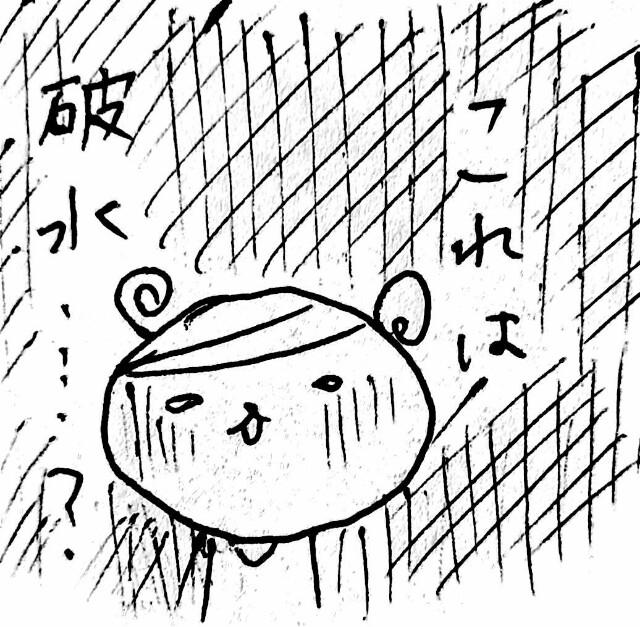 f:id:hamgasukii:20170317123437j:image