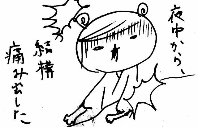 f:id:hamgasukii:20170405105954j:image