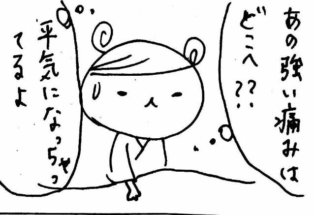f:id:hamgasukii:20170407093443j:image