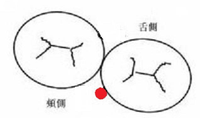 f:id:hamigaki8020:20180222222215j:plain