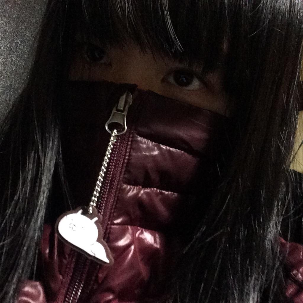 f:id:hamigakinohi:20161110015555j:image
