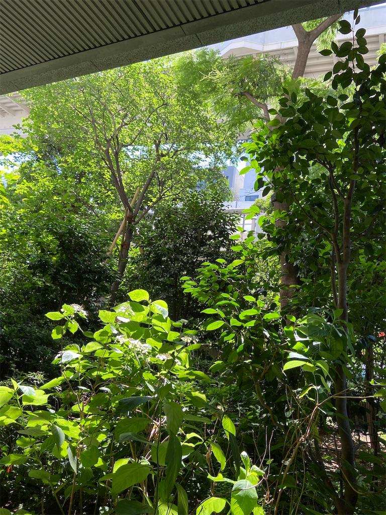 f:id:hammerklavier:20200706203637j:image