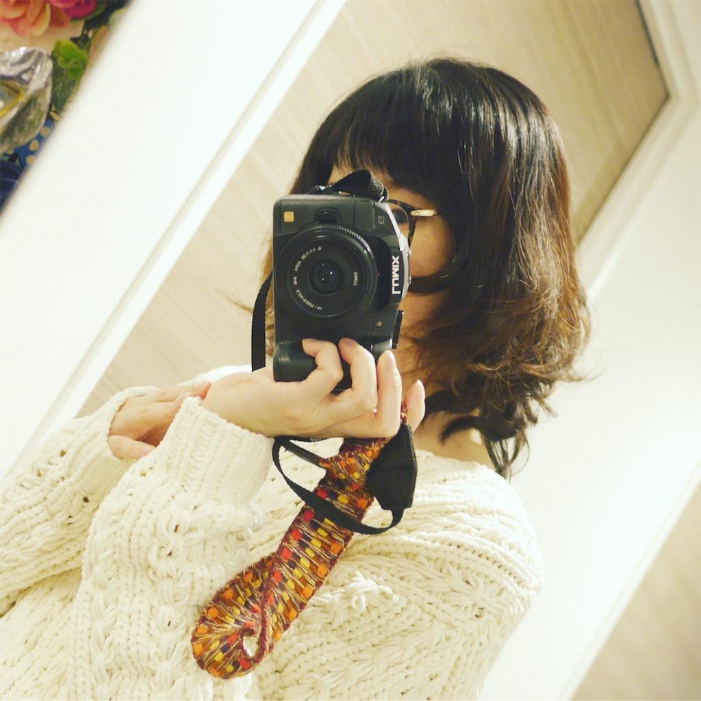 f:id:hamster_nappa:20170104214342j:image