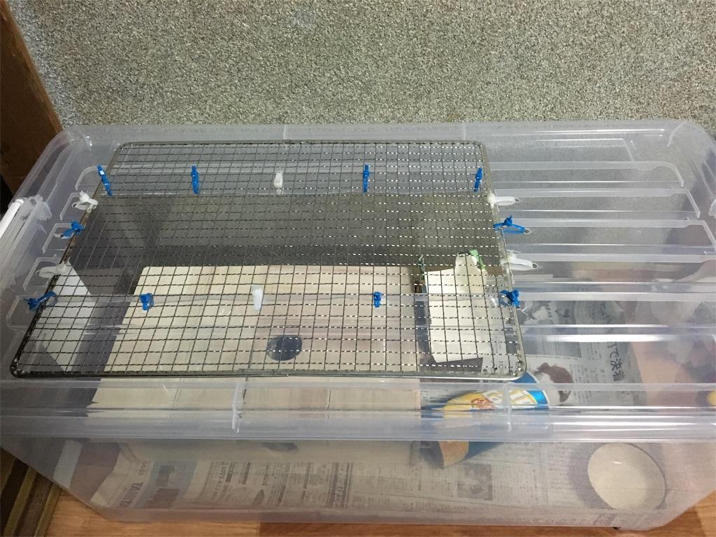 f:id:hamsterlife:20170210215905j:image