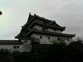 和歌山城。うーん。和歌山城。