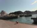 那智勝浦の漁港