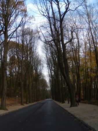 ベルギーの冬の風景