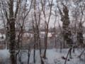 ブラッセルの雪。