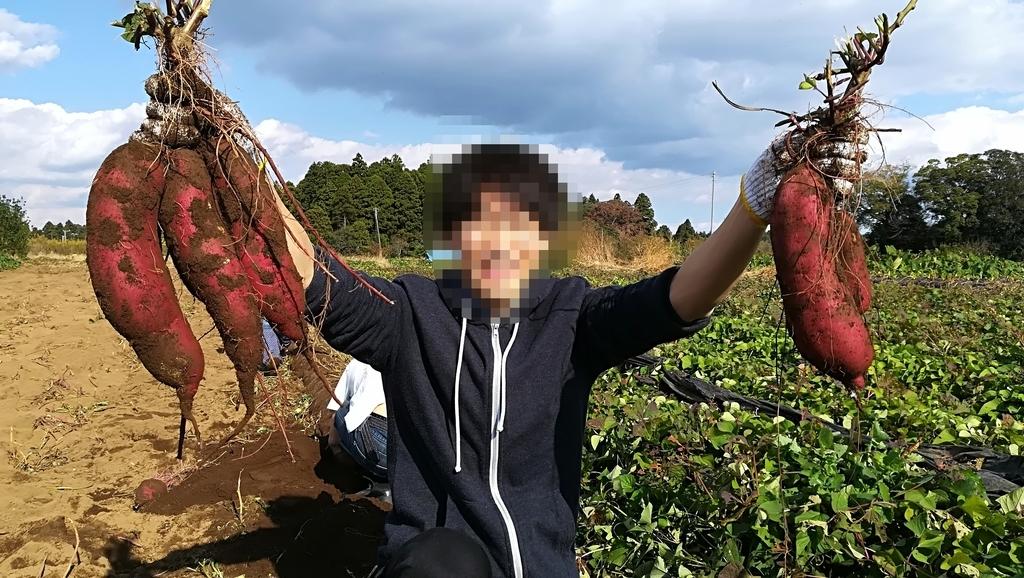 f:id:hamu_teru:20181109005110j:plain