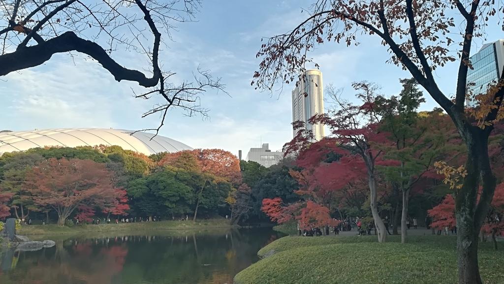 f:id:hamu_teru:20181210221043j:plain