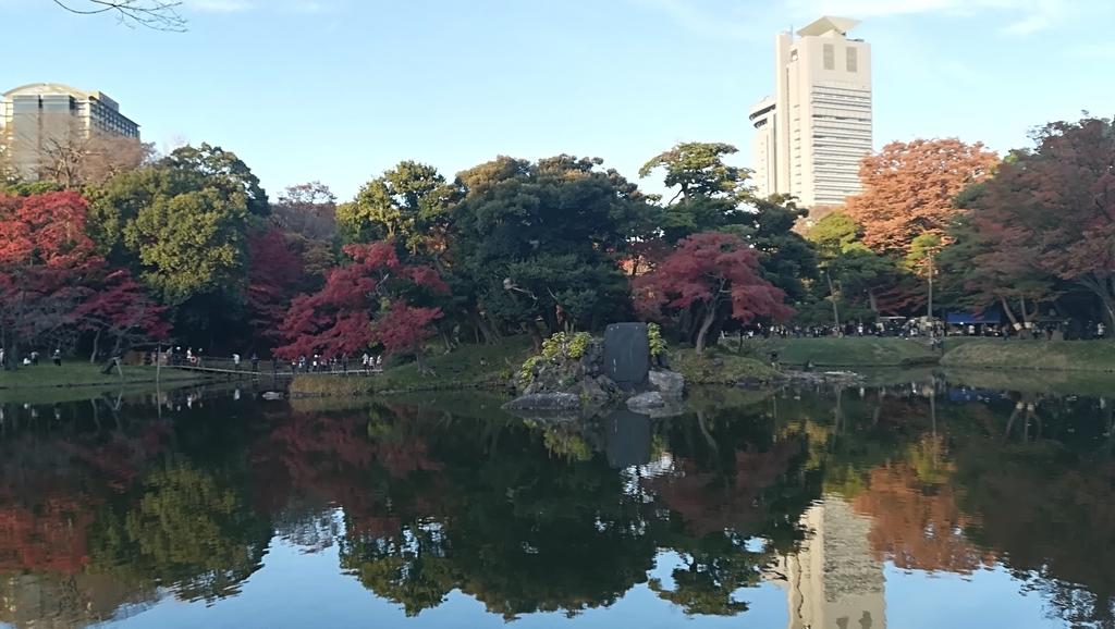 f:id:hamu_teru:20181210221106j:plain