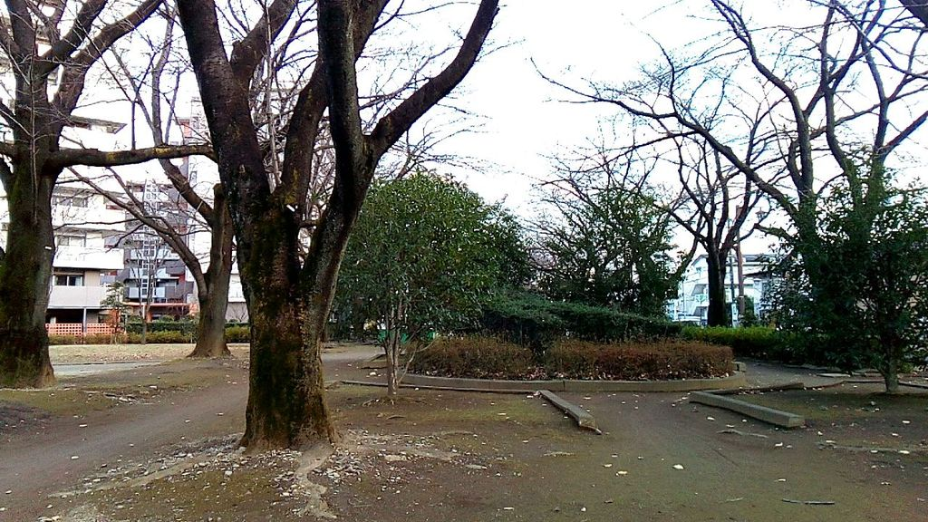 f:id:hamuchi53:20161208145624j:plain