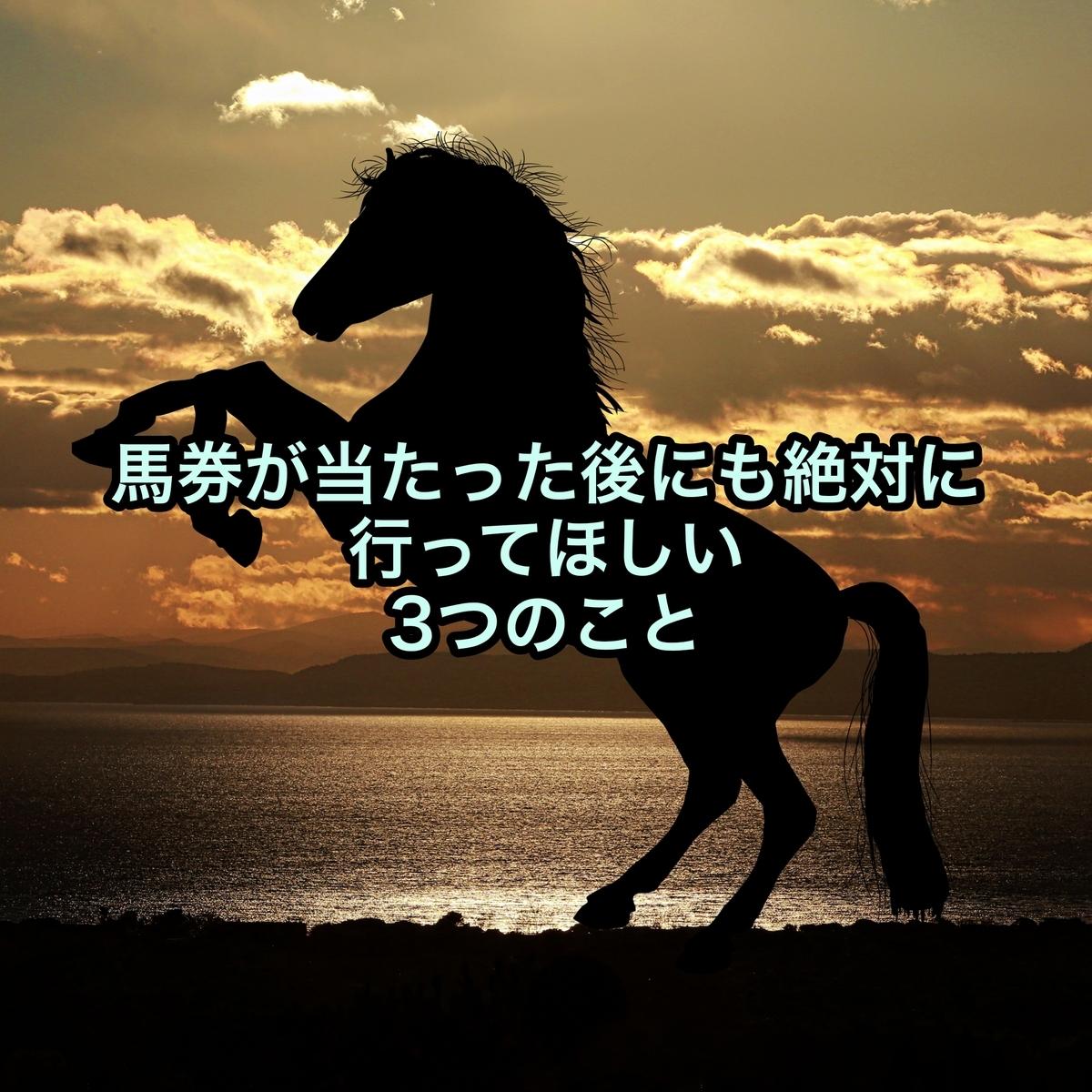 f:id:hamuhamu18:20201008203744j:plain
