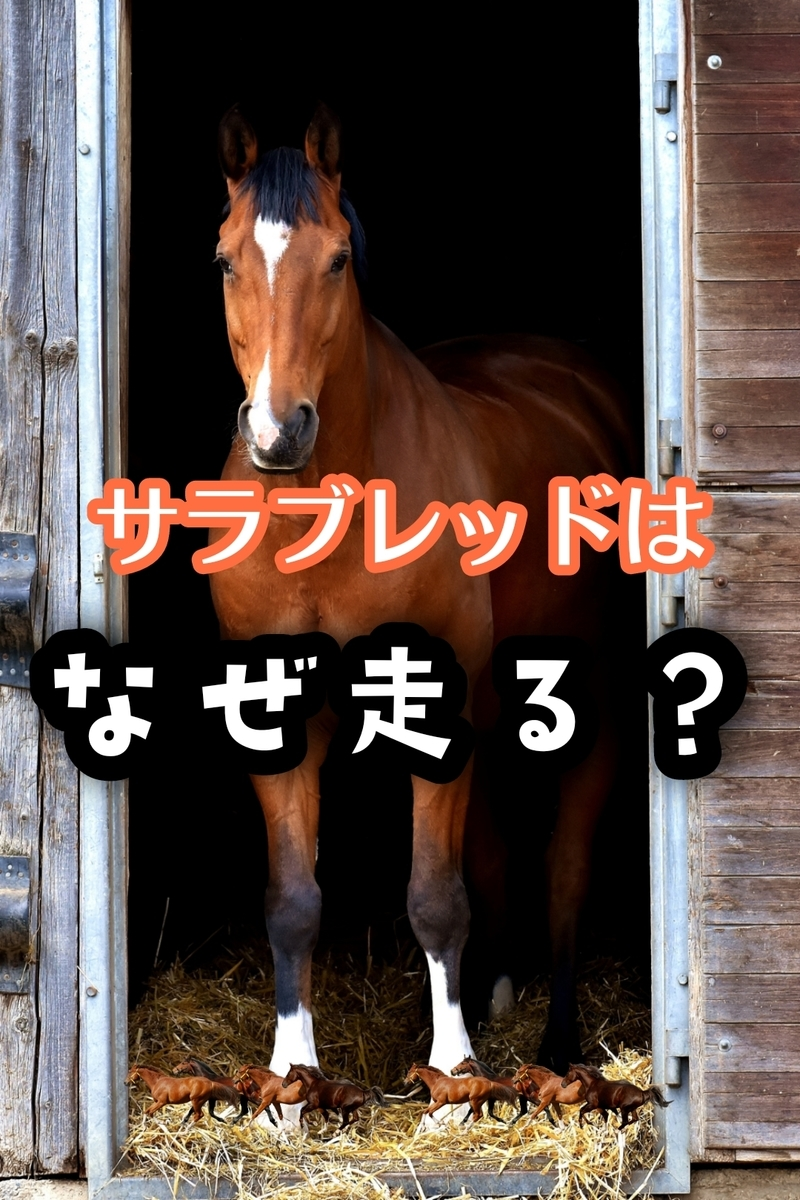 f:id:hamuhamu18:20210328201556j:plain