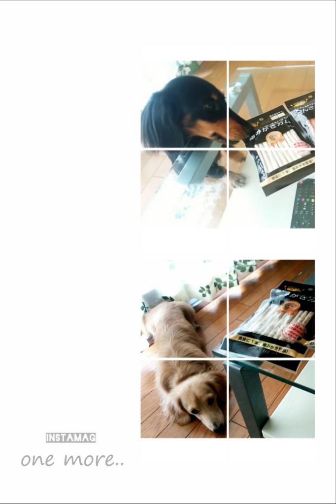 f:id:hamujikun:20160812212722j:plain