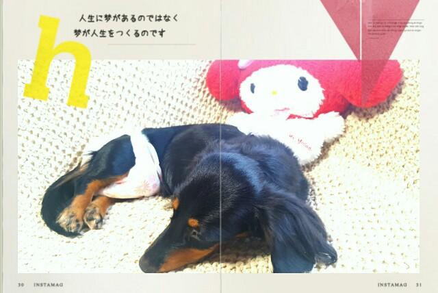 f:id:hamujikun:20160901065739j:image