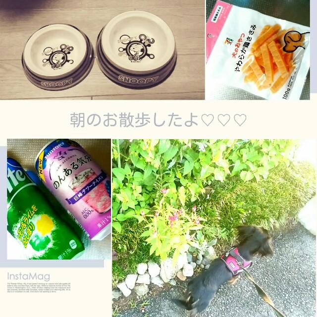 f:id:hamujikun:20160910004133j:image