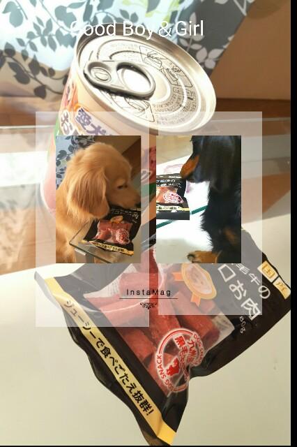 f:id:hamujikun:20160926112253j:image