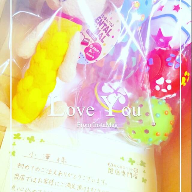 f:id:hamujikun:20170201005927j:image