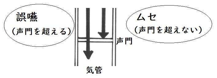 f:id:hana-mode:20200201064359j:image