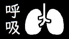 呼吸関連のイラストです
