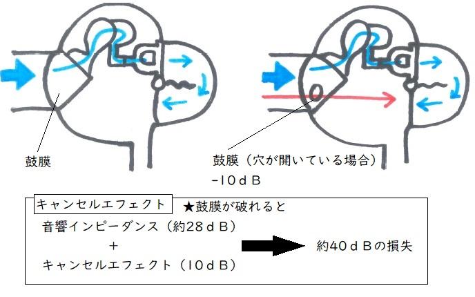 f:id:hana-mode:20200208100309j:image:w200
