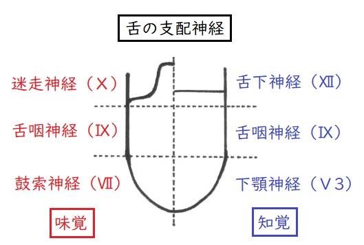 f:id:hana-mode:20200211164658j:image:w200