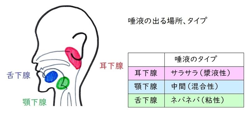 f:id:hana-mode:20200416095220j:image