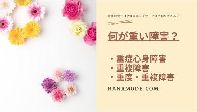 f:id:hana-mode:20200728124213j:image