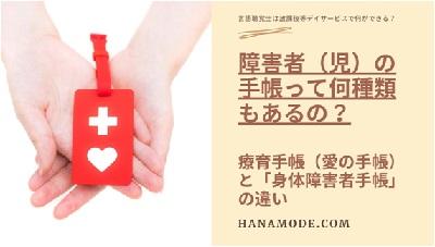 f:id:hana-mode:20200728132434j:image