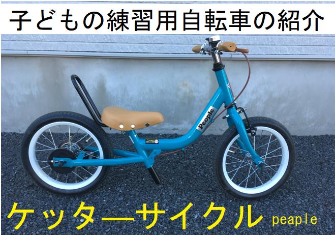 f:id:hana-mode:20210119105214p:image