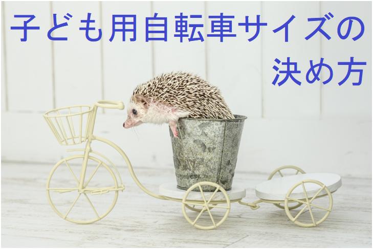 f:id:hana-mode:20210124160446p:image