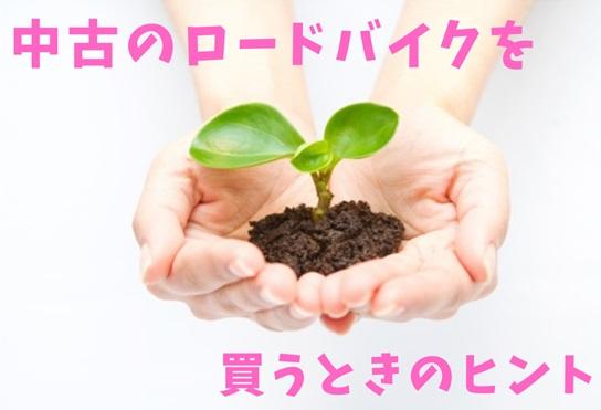 f:id:hana-mode:20210318104741j:image
