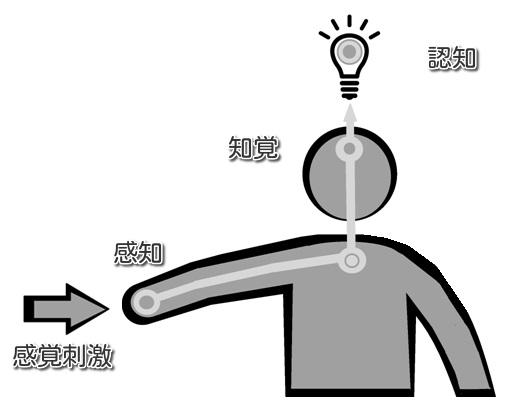 f:id:hana-mode:20210829142614j:image