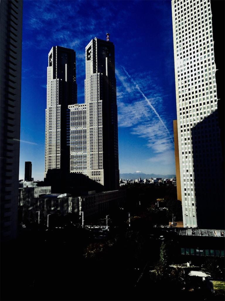 f:id:hana-shugyo:20161019222005j:image