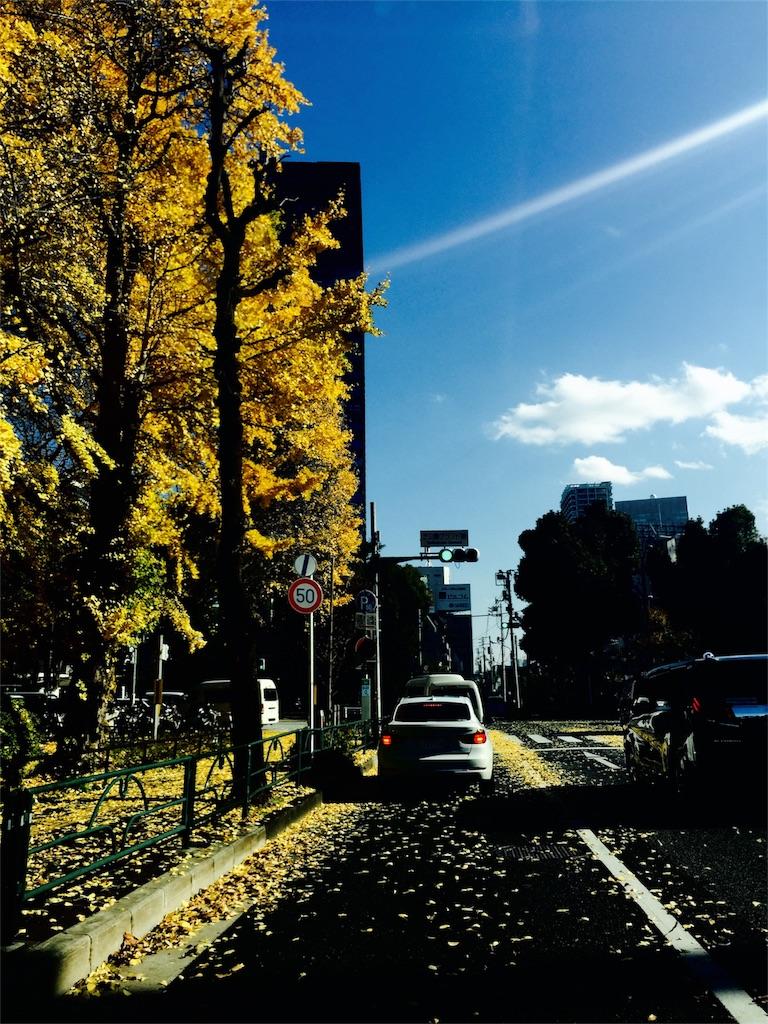 f:id:hana-shugyo:20161206203127j:image