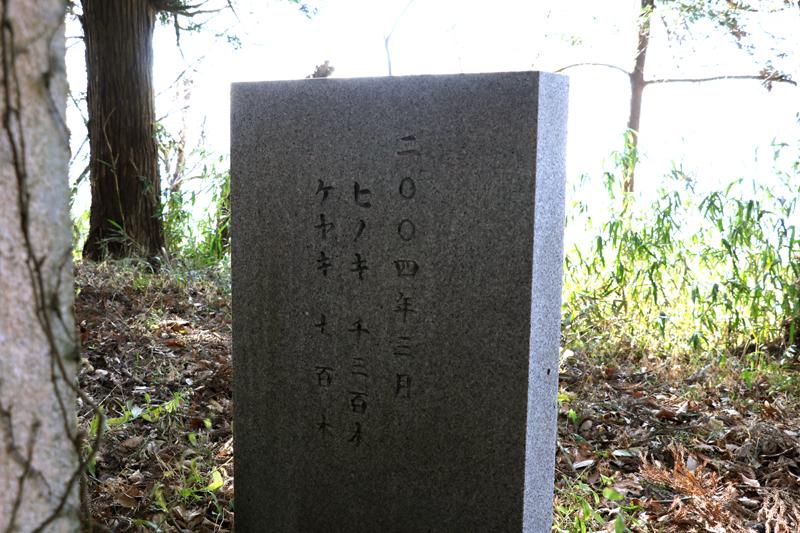 f:id:hana-tabi-ki:20180215133555j:plain