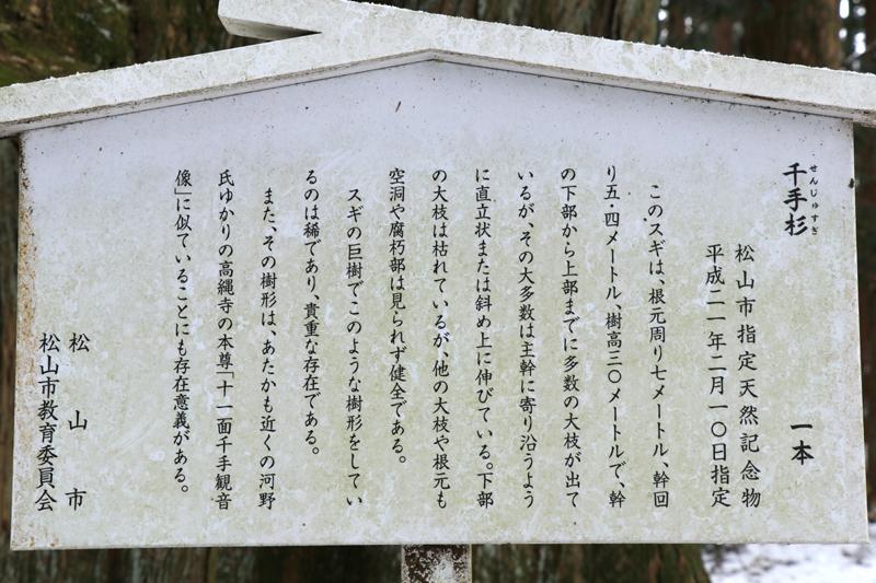 f:id:hana-tabi-ki:20180309122200j:plain