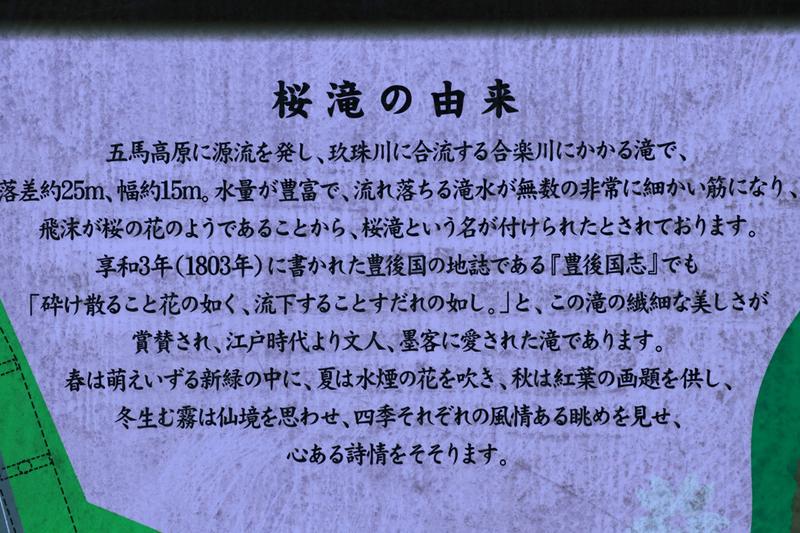 f:id:hana-tabi-ki:20181110151859j:plain