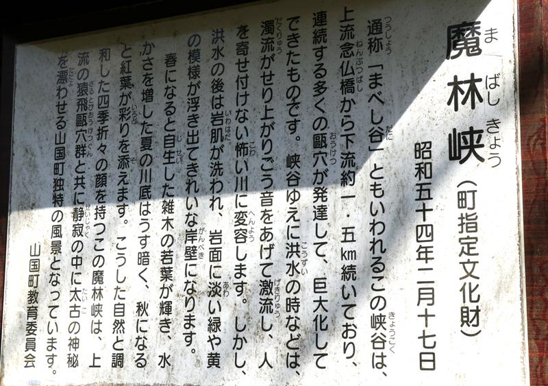 f:id:hana-tabi-ki:20181111191150j:plain