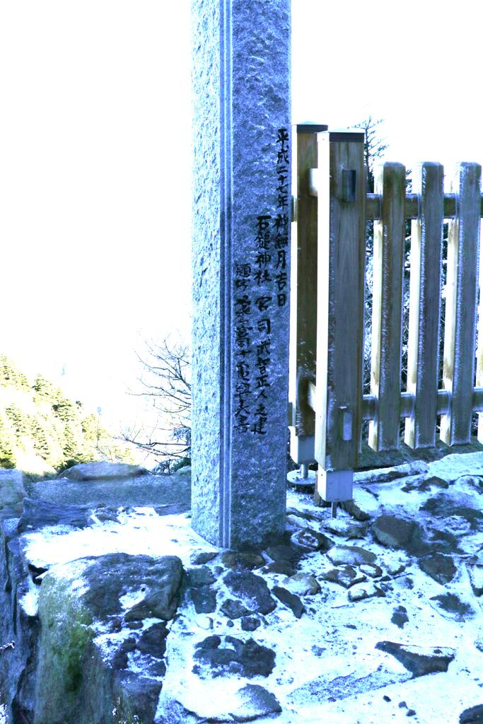 f:id:hana-tabi-ki:20181207214618j:plain