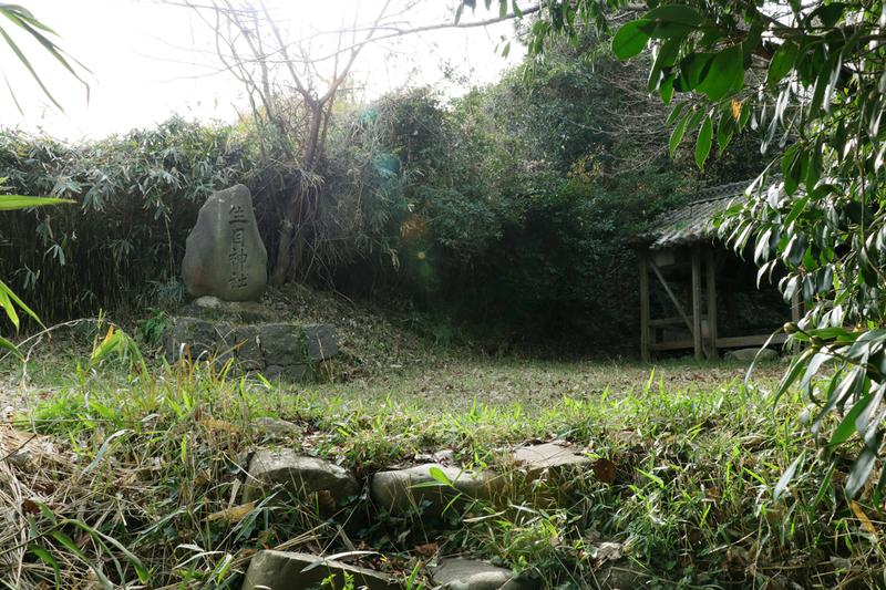 f:id:hana-tabi-ki:20181221182631j:plain