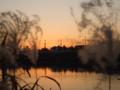 感動の日没
