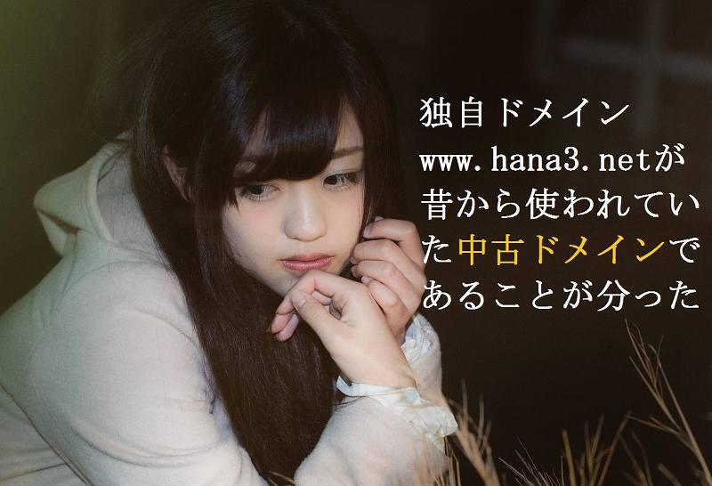 f:id:hana3hana:20160508114441j:plain